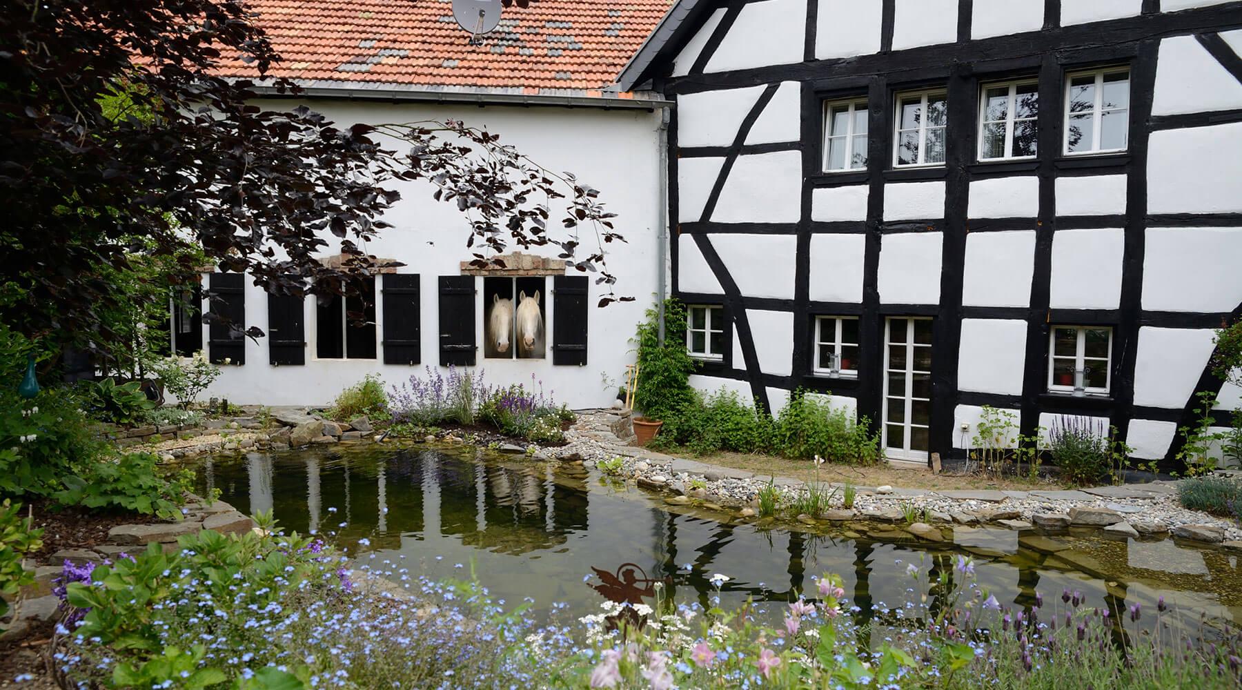 7M Immobilien – Außenaufnahme Haus mit Teich