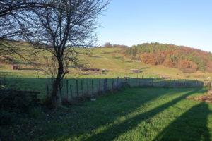 Landwirtschaftliche Immobilie – Großer Bauernhof mit viel Land und sehr großen Stallungen