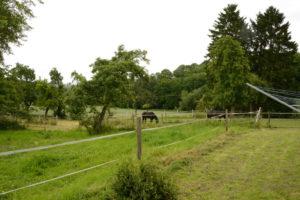 Ländlich gelegener Pferdehof